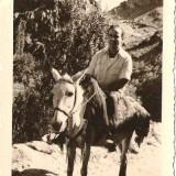מאיר באיראן סוף 1949