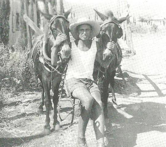 כפר חסידים 1936