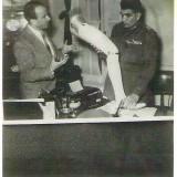 מאיר ונג'יב, מצרים 1953
